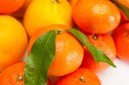 מתהדרים - פירות הדר