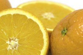 סלט קינואה ותפוזים
