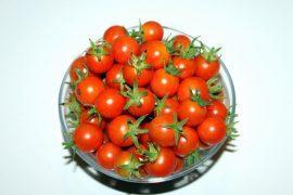 מרק עגבניות שרי עשיר עם פסטו טופו ואבוקדו