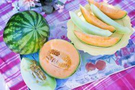 פירות: המרעננים הרשמיים של הקיץ